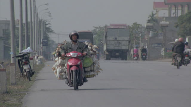 a vietnamese man transports many geese on the back of his motorbike. - oca uccello d'acqua dolce video stock e b–roll