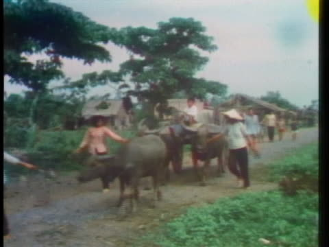 vietnamese villagers move down a road, returning to their village. - animal stock videos & royalty-free footage