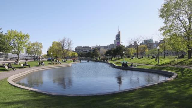 vieux montréal pond looking towards pointe à callières on a sunny may springtime day - vieux montréal stock videos & royalty-free footage
