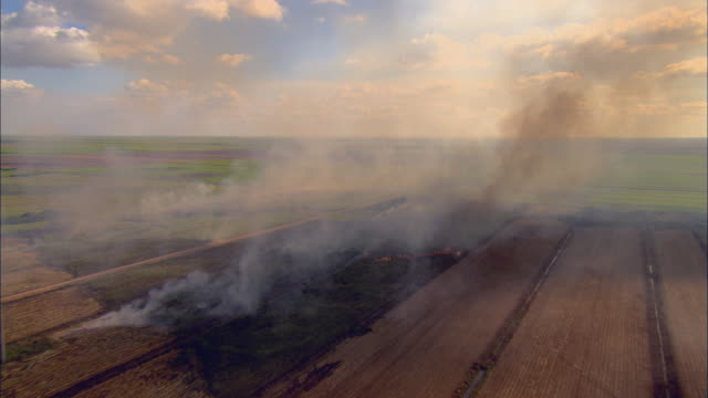AERIAL WS View above burning sugar cane fields through smoke / Florida, USA