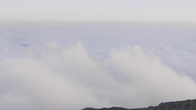 view above dense clouds on mt. fuji, wide - satoyama scenery stock videos and b-roll footage