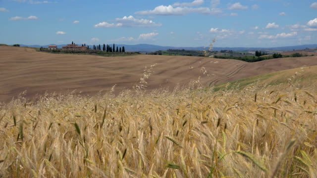 view across fields with country house, landscape of crete senesi, province of siena, tuscany, italy - lockdown viewpoint stock videos & royalty-free footage