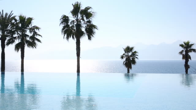 view across infinity pool to palm trees, bay and distant mountains - infinity pool stock videos & royalty-free footage