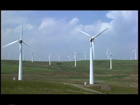 wa view across open fields with many wind turbines turning, llandinam wind farm, wales - 1999 stock videos and b-roll footage