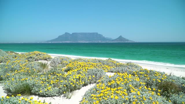 Blick über die Bucht zum Tafelberg, Kapstadt, Südafrika