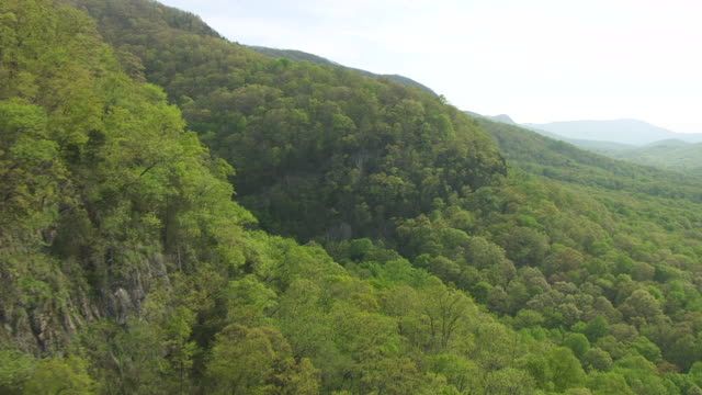 ms aerial view along cliff and forest in cumberland gap / kentucky, united states - なだらかな起伏のある地形点の映像素材/bロール