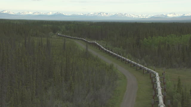 ws aerial view along trans alaska pipeline through woods / alaska, united states - pipeline stock videos & royalty-free footage