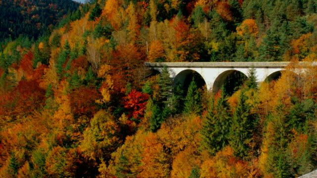 blick auf malerische bogenbrücke durch den bunten herbstwald - rumänien stock-videos und b-roll-filmmaterial