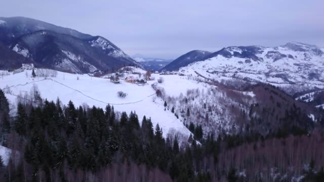 view by drone of snowy winter landscape in the carpathian mountains near bran castle, transylvania, romania, europe - bran castle stock videos & royalty-free footage