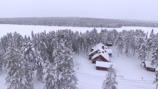 vídeos de stock e filmes b-roll de view by drone of torassieppi reindeer farm cabins covered in snow in winter, finnish lapland, finland, europe - finlândia