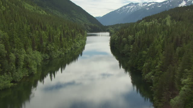 vídeos de stock, filmes e b-roll de ms aerial tu view fly over tongass national forest for lower dewey lake with clouds reflected in water and snow covering mountains / skagway, alaska, united states - skagway