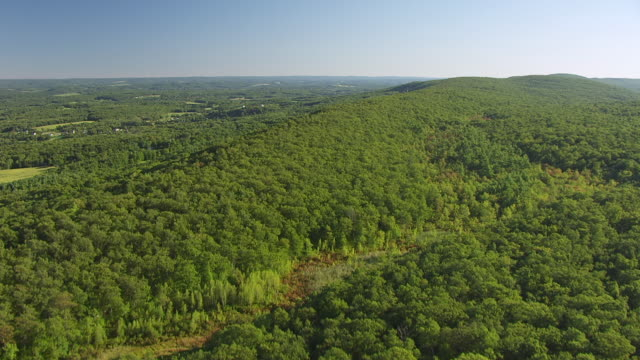 WS AERIAL TU View flying over Kittatinny Mountains / New Jersey, United States