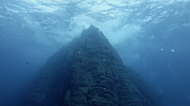 view from 20m depth up to water surface of roca partida - roca video stock e b–roll