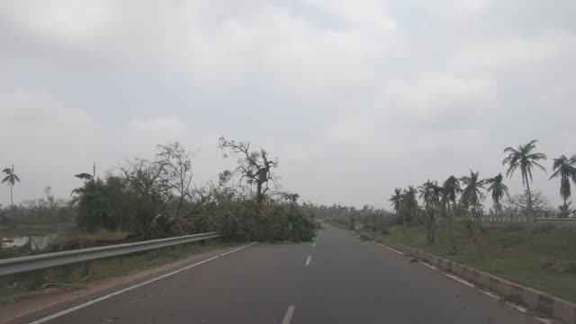 View from a car of desruction caused by Cyclone Fani in Puri India