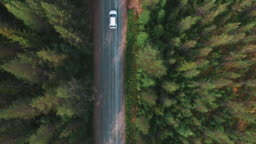 View from above of driving car in pine tree forest. Aerial drone view of gravel road, following white car