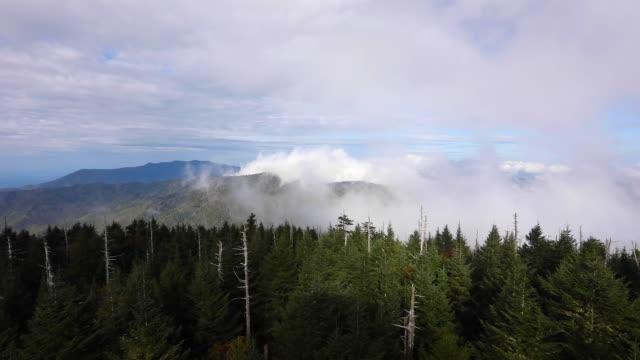 stockvideo's en b-roll-footage met view from clingman's dome, great smoky mountain national park - verwonderingsdrang