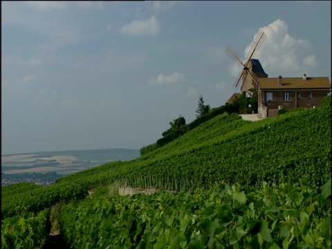 view from hill windmill to right of frame (not rotating) fields in distance champagne - 1990~1999年点の映像素材/bロール
