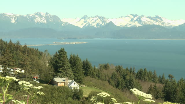"""view from hillside above homer, houses in foreground on forested hill, homer spit and snow capped mountains of kachemak bay state park & wilderness park visible across kachemak bay, kenai peninsula, alaska."" - homer alaska stock videos & royalty-free footage"