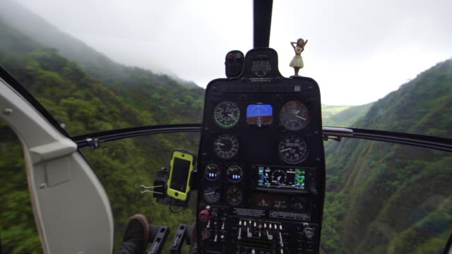 view from inside cockpit of a helicopter as it flies through bad weather - タートル湾点の映像素材/bロール