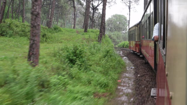view from kalka-shimla toy train of the surrounding greenery - british rail stock videos & royalty-free footage
