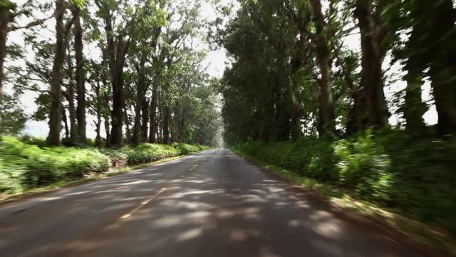 vidéos et rushes de view from moving car on road, kauai, hawaii - 50 secondes et plus