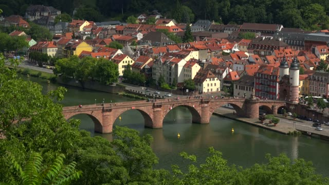 view from philosophenweg to heidelberg with neckar river, castle and old bridge, heidelberg, baden-wurttemberg, germany, europe - baden wurttemberg stock videos and b-roll footage