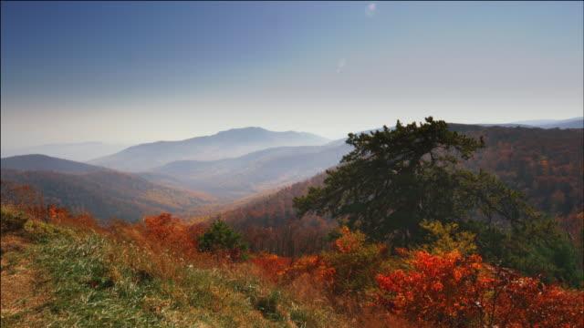 view from skyline drive, blue ridge mountains of virginia - バージニア州点の映像素材/bロール