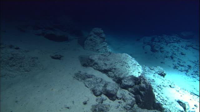 view from submarine of deep sea floor, mid atlantic ridge - sottomarino subacqueo video stock e b–roll