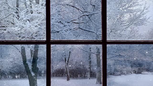 blick aus dem alten beschlagenen fenster des schneebedeckten waldes - behaglich stock-videos und b-roll-filmmaterial