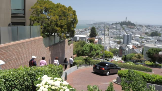 vídeos de stock, filmes e b-roll de view from top of lombard street (crookedest street in the world), san francisco, california, united states of america, north america - lombard street san francisco