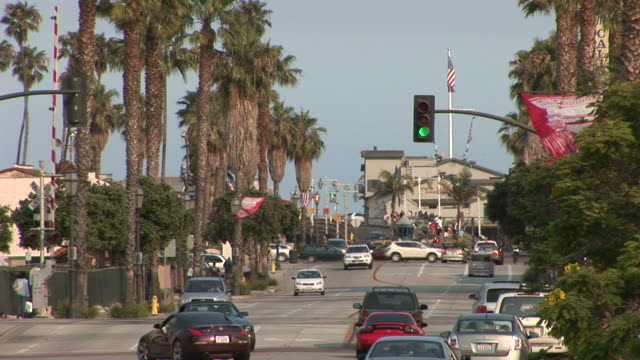 view of a city street in santa barbara united - fan palm tree stock videos & royalty-free footage