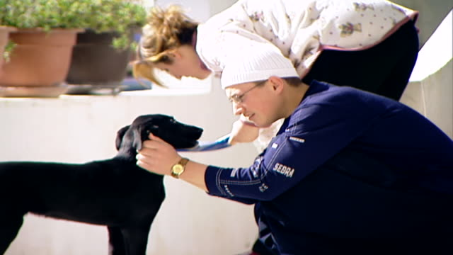 view of a druze boy petting his puppy the boy is wearing a white skullcap denoting that he is a sheikhintraining the boy's sister sweeps the veranda - veranda stock videos & royalty-free footage