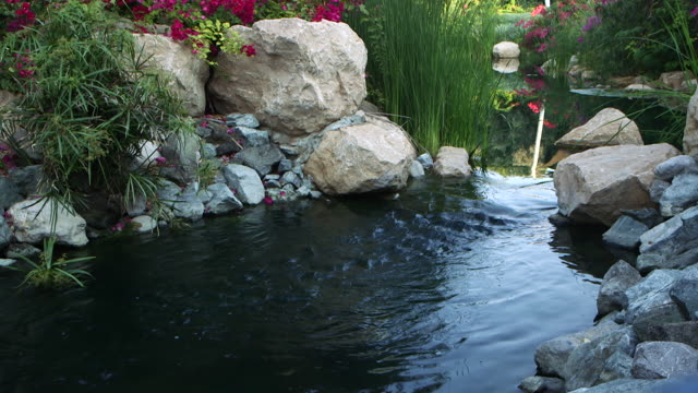 view of a garden pond surrounded by a rockery. - pond stock videos & royalty-free footage