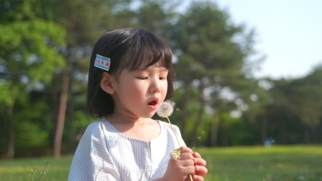 view of a girl blowing dandelion seeds - dandelion stock videos & royalty-free footage