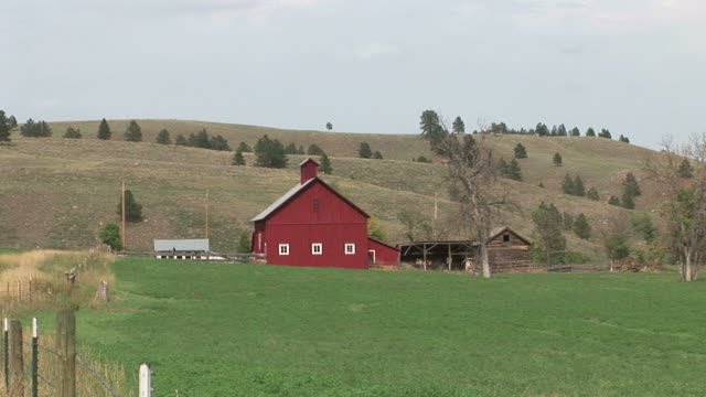 view of a house in the valley of custer state park south dakota united states - custer staatspark stock-videos und b-roll-filmmaterial
