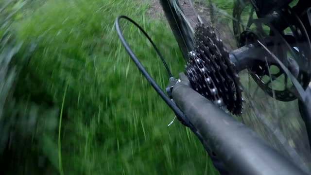 pov view of a mountain biker gears riding on a singletrack trail. - goodsportvideo stock videos and b-roll footage