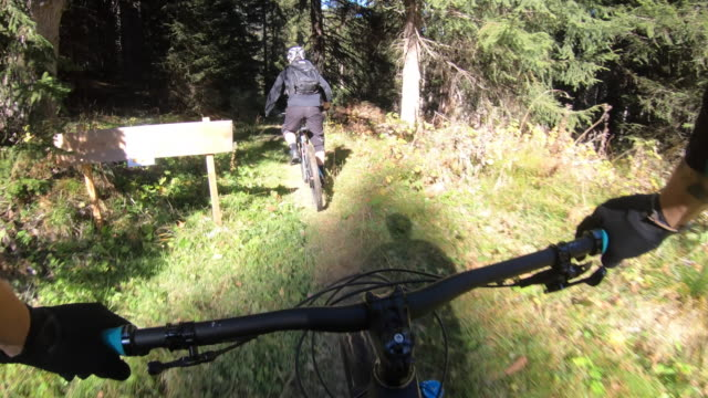 pov view of a mountain biker hands handlebars biking on a singletrack trail. - time-lapse - wearable camera stock videos & royalty-free footage