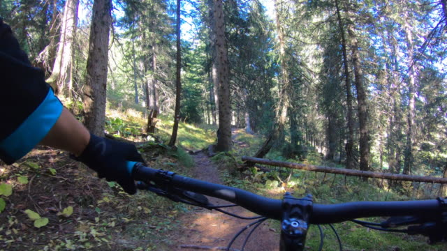 vídeos de stock e filmes b-roll de pov view of a mountain biker hands handlebars biking on a singletrack trail. - andar de bicicleta de montanha
