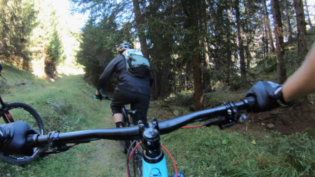 pov view of a mountain biker hands handlebars biking on a singletrack trail. - handlebar stock videos & royalty-free footage