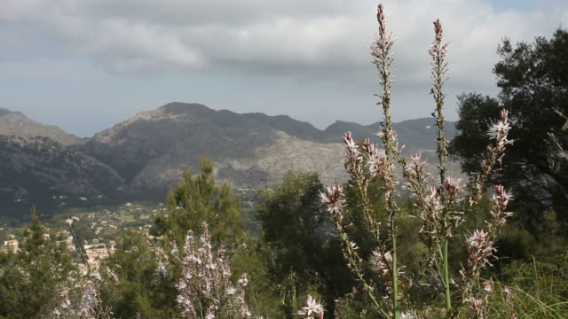 view of a mountainous landscape - felswand stock videos and b-roll footage