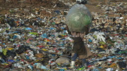 4K view of a poor woman below the poverty line, walking through the dump site alongside thousands of European White Storks with a large bag of recyclable plastic material on her head