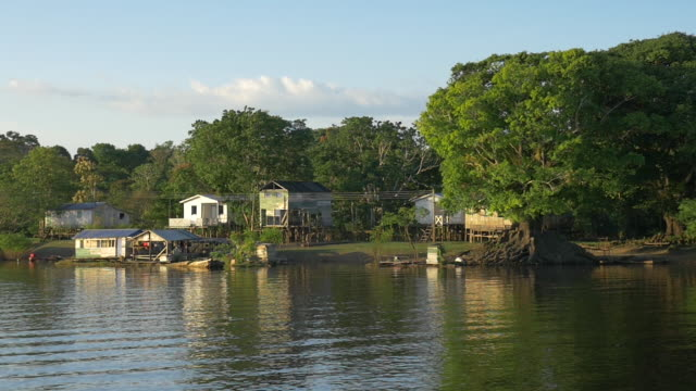"""""""view of a small village called 'boca do mamirauíç', at the brazilian amazon"""" - river amazon stock videos & royalty-free footage"""