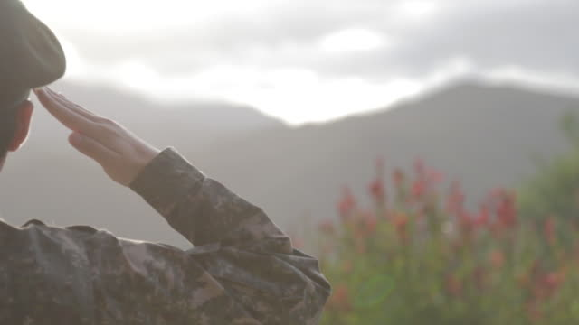 view of a soldier saluting - saluting stock videos & royalty-free footage