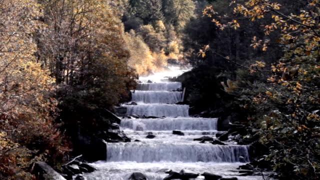 view of a stream in val di fassa, italy. - val di fassa stock videos and b-roll footage