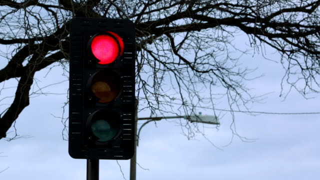 view of a traffic light changing from red to green - traffic light stock videos & royalty-free footage