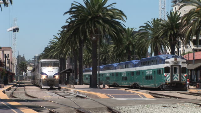 view of a train transportation in san diego united states - fan palm tree stock videos & royalty-free footage