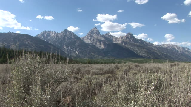view of a valley in grand teton national park of united states - grand teton stock-videos und b-roll-filmmaterial