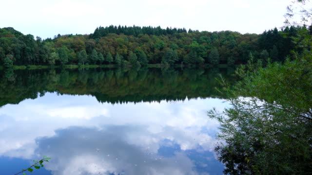 view of a volcanic lake, maar, vulkaneifel nature park and geopark, western eifel territory, eifel region, germany, europe - geschützte naturlandschaft stock-videos und b-roll-filmmaterial