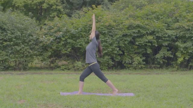 view of a woman doing yoga on yoga mat at a park - top video stock e b–roll