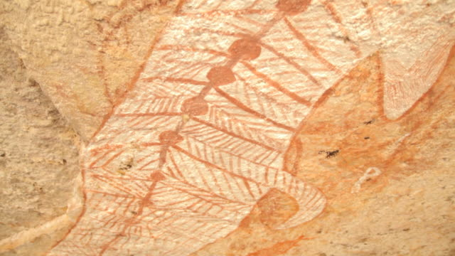ms pan view of aboriginal cave art rainbow serpent / northern territory, australia - australian aboriginal culture stock videos and b-roll footage
